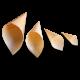 Конверт - рожок для еды деревянный