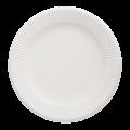Бумажные тарелки белые